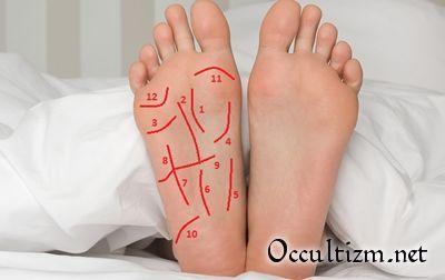 Педомантия - основы изучения человека по стопе ноги и линиям на подошве ступни