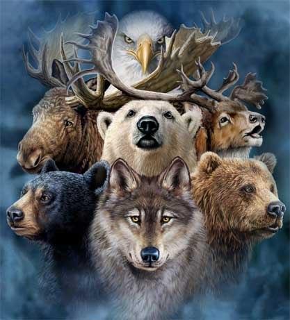 Доклад на тему тотемные животные 52